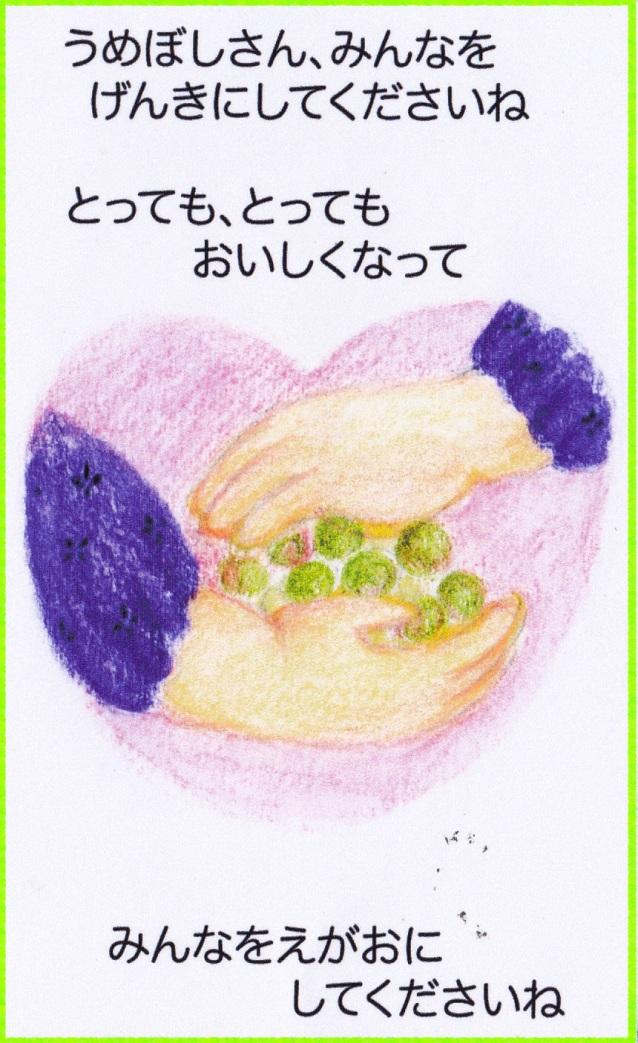 umeboshi-5.jpg